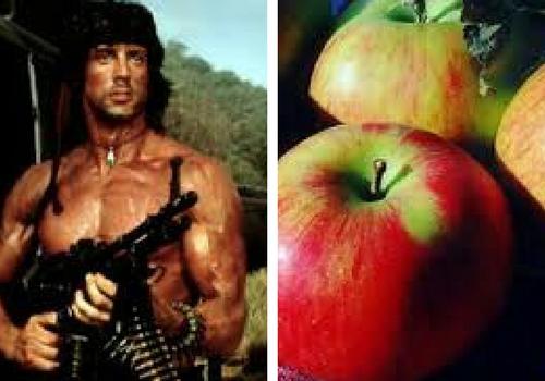 Rambo.png